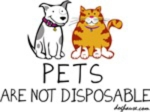 pets_not_disposable